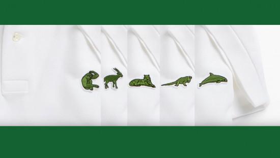 As espécies mais ameaçadas do mundo estão nas pólos da Lacoste (da esq. pra dir.): gibão-negro-cristado-oriental, saola, tigre-de-sumatra, iguana-de-anegada, boto-do-pacífico...