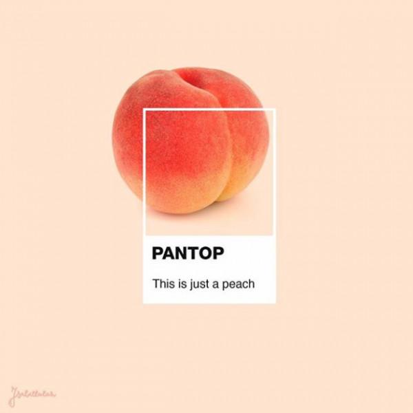 040418-pantone-pantop-21