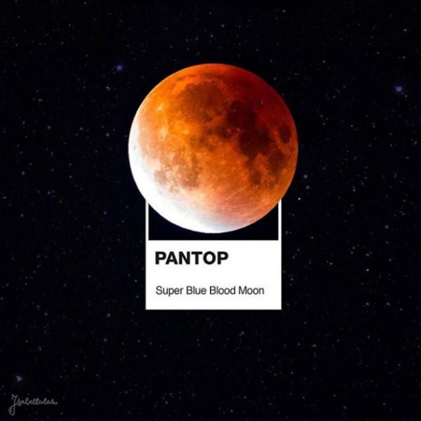 040418-pantone-pantop-22