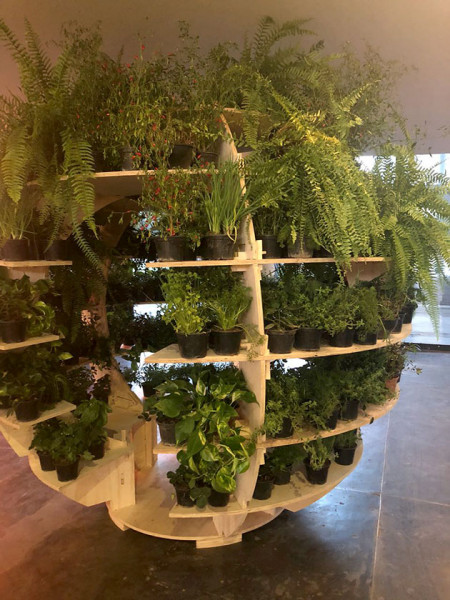 270618-made-growroom